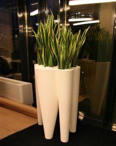Anyósnyelv növénydekoráció fehér design kaspóban