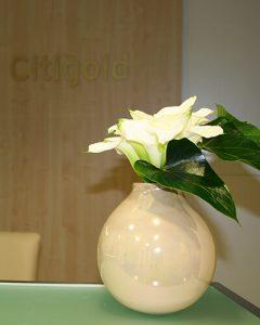 Citibank recepció dísz - fehér kálák