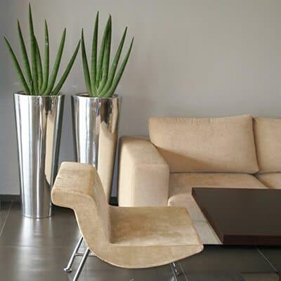 Irodai növénydekoráció design kaspóban