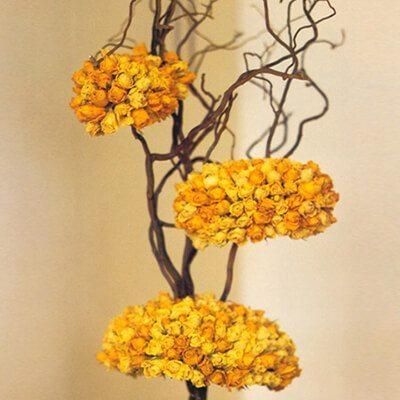 Sárga rózsákból készült gömbök mogyoró ágon