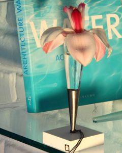 Ajándék fémváza orchideával