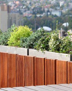 Lakásdíszítés vegyes évelő növénydekorációval apartman teraszán