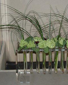 Üzletdekoráció zöld labdarózsával kémcsöves vázában