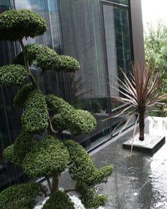 Zen terrace decoration with plants.
