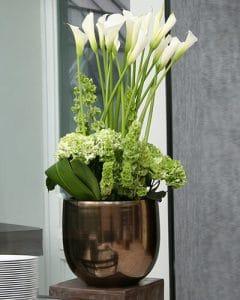 Buffet decoration of green hydrangea and white calla in golden ceramics pot