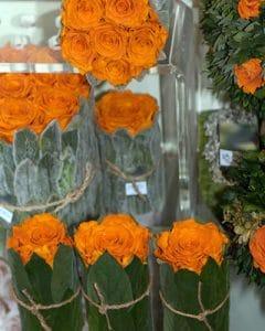 Orange coloured Vermont compositions