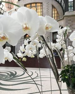 Hotel lobby decoration from phalaenopsis orchids