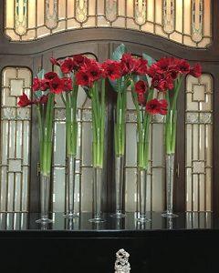 Reception decoration from burgundy amaryllis