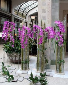 Hotel lobby decoration with bamboo and orchids.