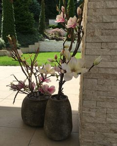 Decorate your flat with artificial magnolia