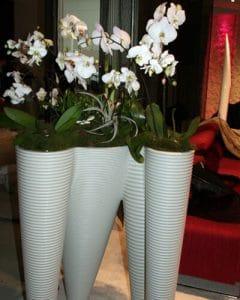 Large plastic pot holds orchid decoration