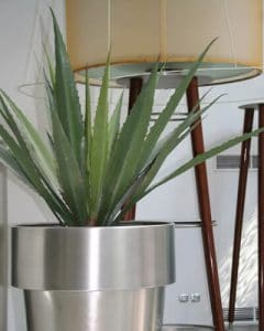 Artificial agave plant decorating apartment in metal pot