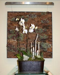 White orchids placed in leather pot