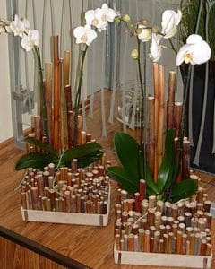 Bamboo base with white orchids