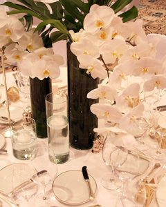White phlaenopsis orchid stems in tall glass vases