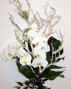 Elegant white orchid bouquet for mother