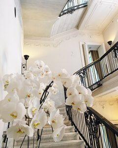 Esküvői díszítés orchideákkal lépcsőházban