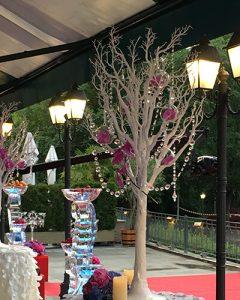 Esküvői díszítés magas fákkal teraszon