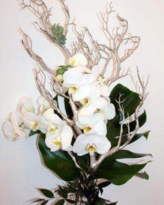 Elegáns fehér orchidea csokor örömanyáknak