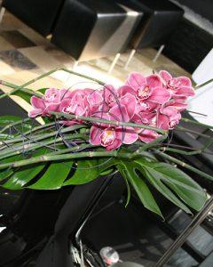 Cymbidium orchidea csokor magánlakás nappalijában