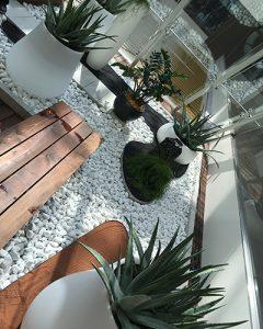 Zen hangulatú növénykompozíció modern irodaházban