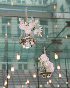 Üveggömbben orchideafejek mennyezetről lógatva